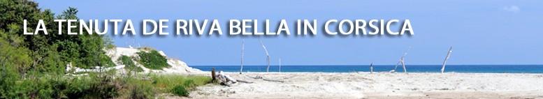 Il Domaine de Riva Bella - Riva Bella Talasso in Corsica